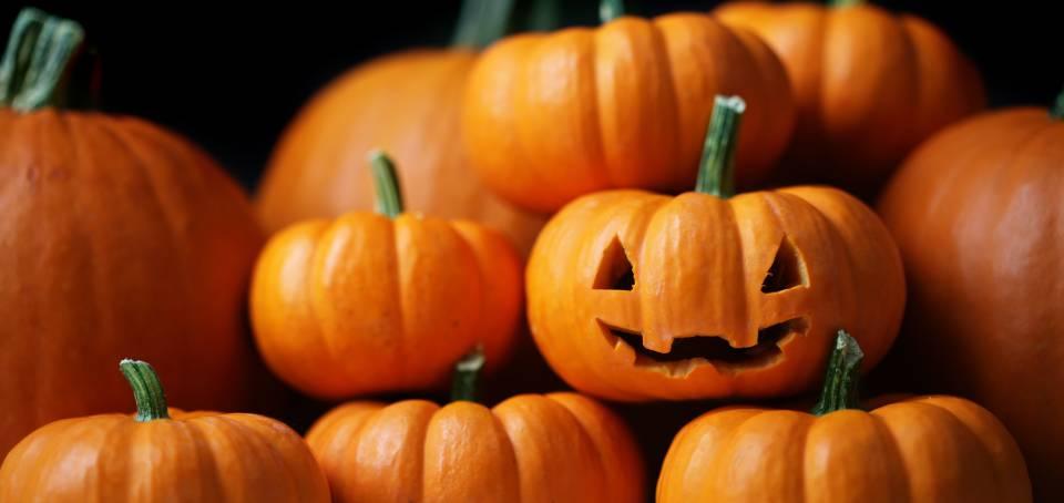 Decatur Magazine Calendar - October-November 2015