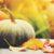 Decatur Magazine October - November 2016 Calendar