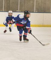The Hockeyville Effect