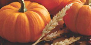 Decatur Magazine October-November 2020 Calendar of Events